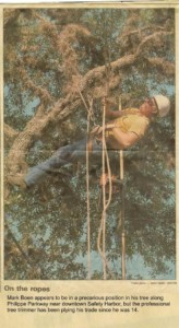 Mark Boen on the ropes in a tree in Safety Harbor