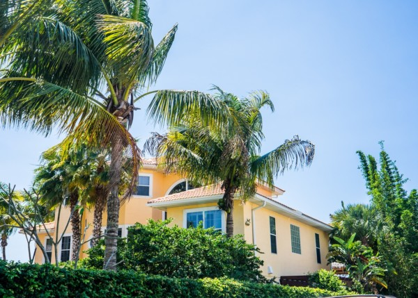 Boen's Tree Service in Clearwater
