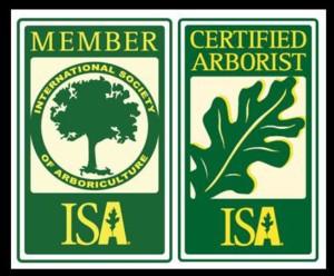 Boen's Tree Service is an ISA Certified Arborist