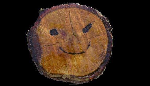 Smiling Tree Stump